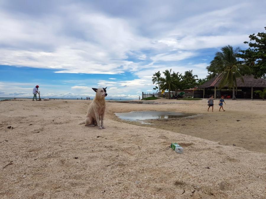 Santa Fe, Bantayan Island, Filipiny