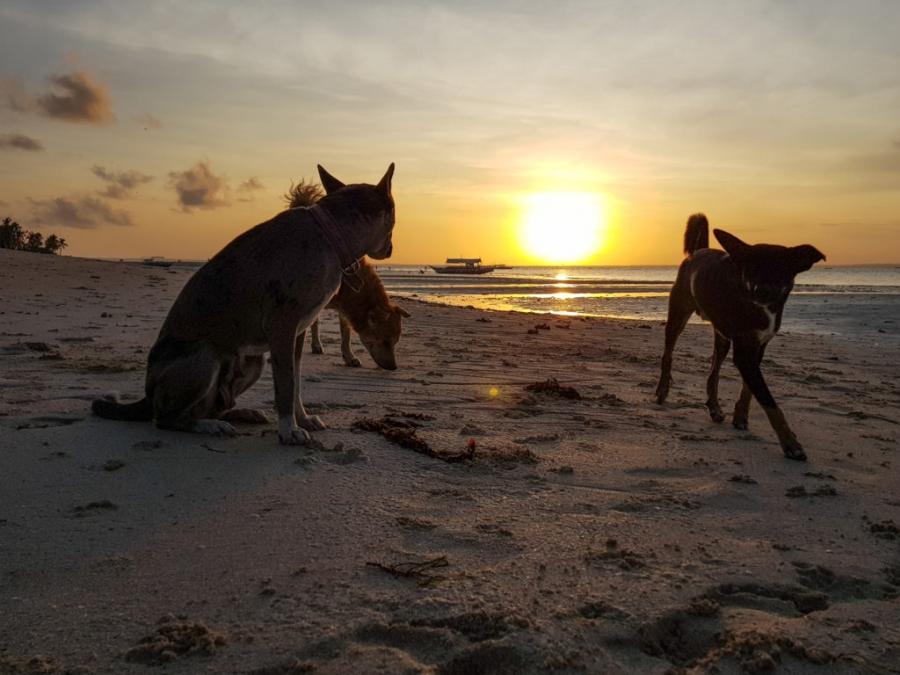 Bantayan Island, Santa Fe beach